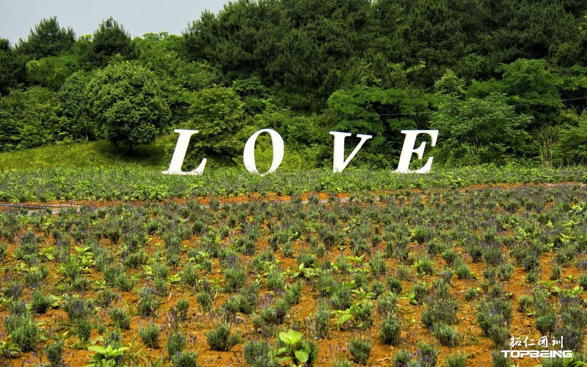 """为""""LOVE""""而生"""
