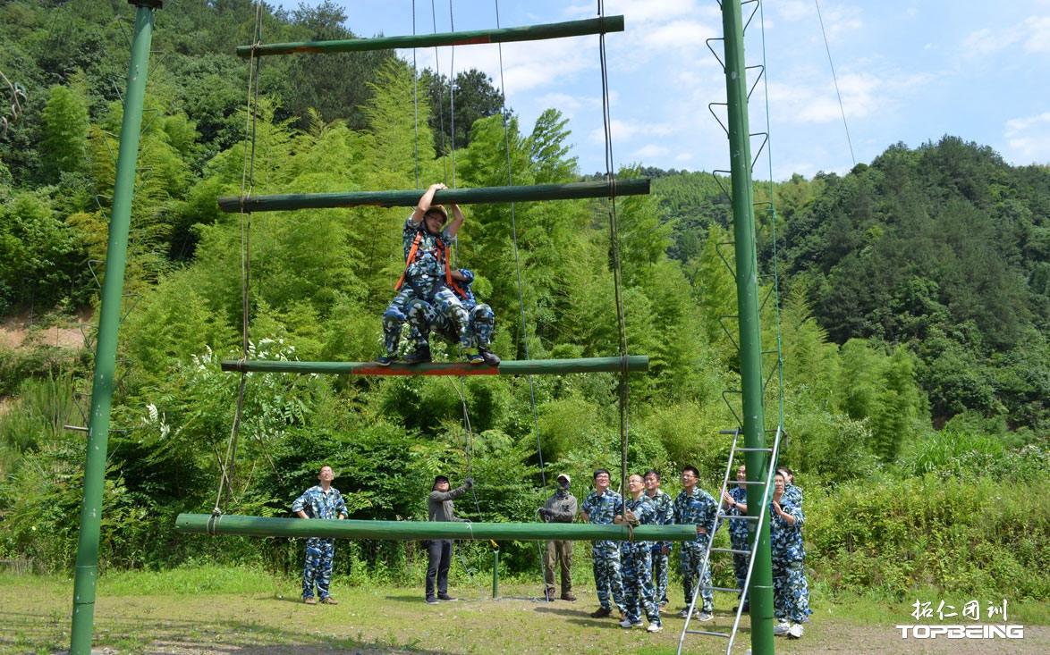天梯,合作才能成功